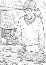 Harry Potter coloring page (055)