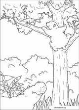 Little Polar Bear coloring page (019)